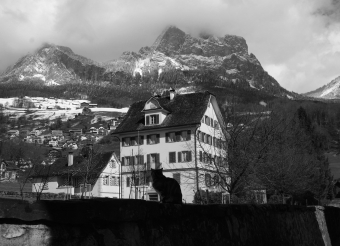 Herrenhaus in Schwyz | Das Gebäude Sedleren (Haus von Weber) wurde vermutlich 1607 unter Leonhard Nideröst in Schwyz errichtet. Um 1613 wurde die Innenausstattung mit Täferzimmern umgesetzt.