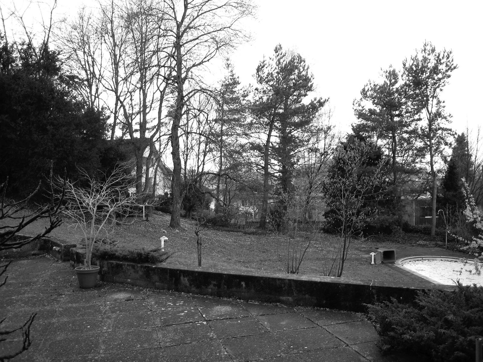 living with a castle view, Brunnmattstrassse, plot