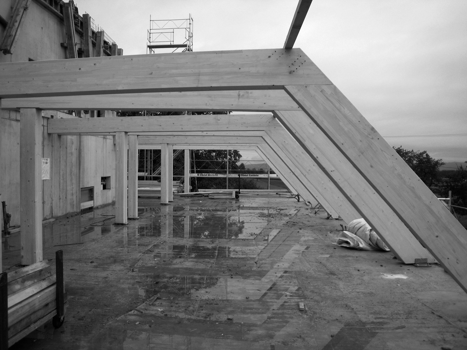 wiggwil farm, roof construction